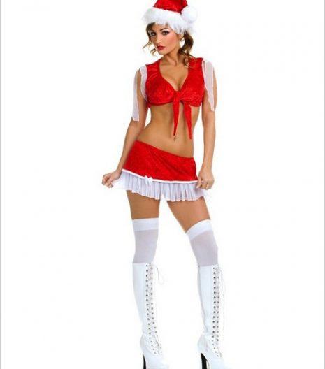Sexy Santa Girl Costume